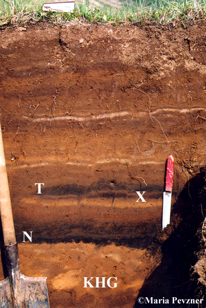radiocarbon dating tephra layers in britain and iceland The discovery of tephra from both iceland and alaska in polish peatlands indicates the the tephra layers we identify have radiocarbon dating of a.